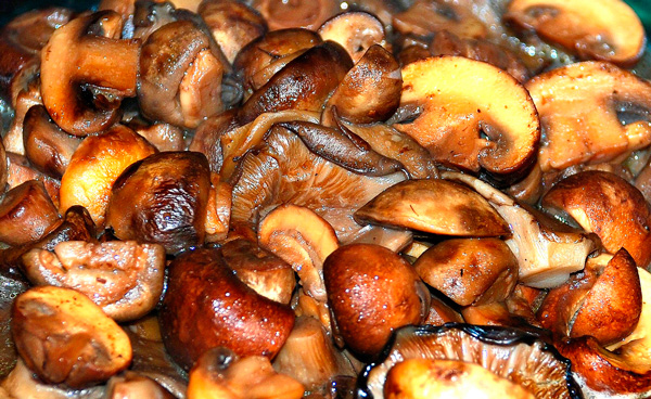 tasting of wild mushrooms is with caution